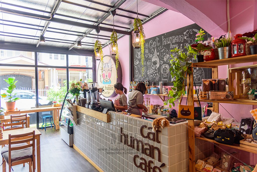 Cat Human Cafe