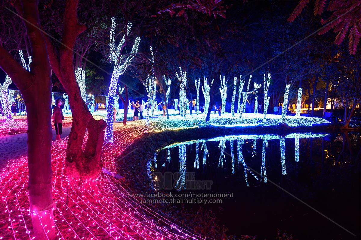 Nasatta light festival